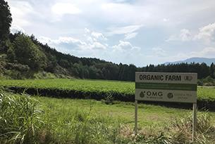 FARM Prj(ファームプロジェクト)|活動写真03
